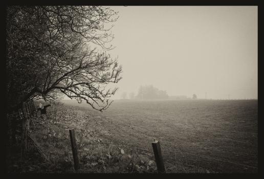 Scarecrow. Lyth. Caithness 2018